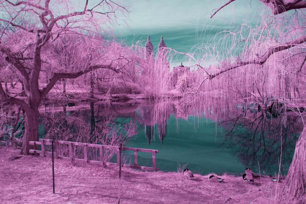 Нью-Йорк на инфракрасных снимках Райана Берга (30 фото)