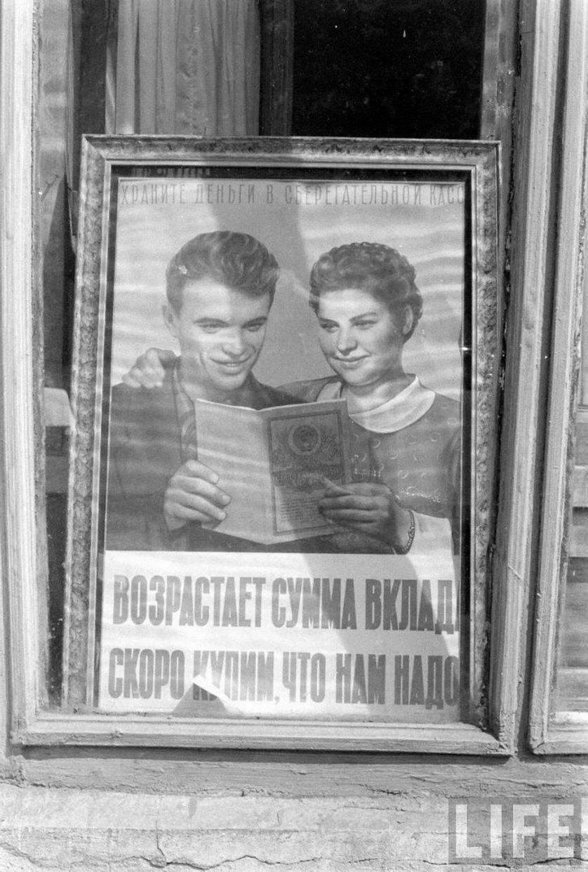 витрины магазинов 1960 год