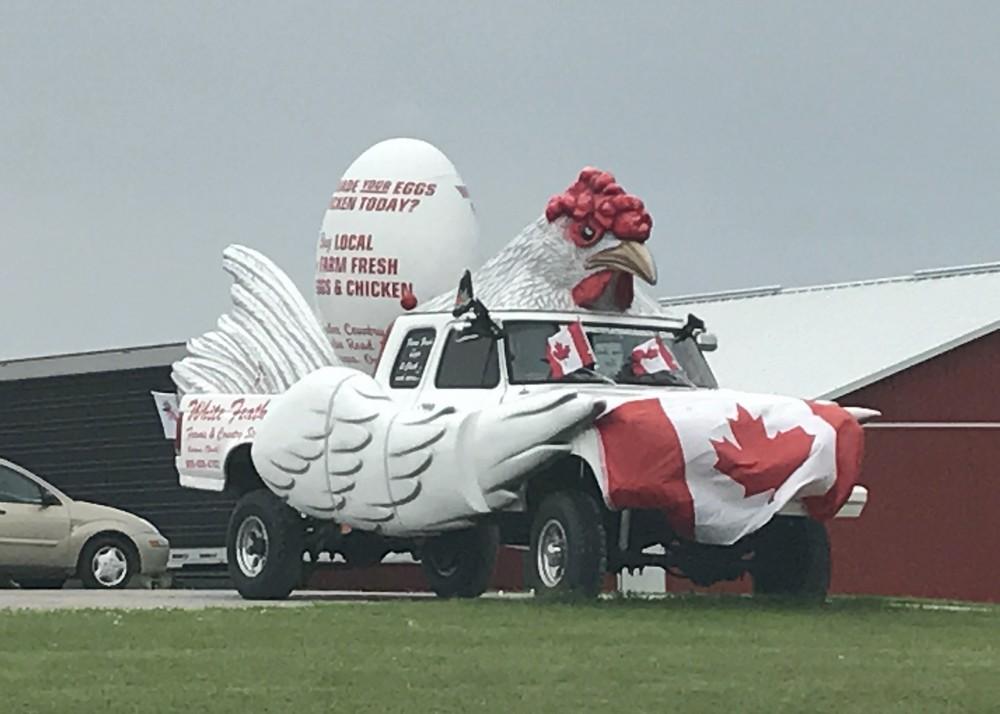 Тем временем в Канаде - 8 (40 фото)