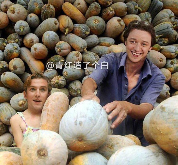 Звездные фермеры
