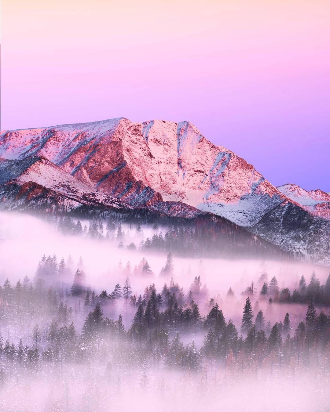 Сказочные пейзажи Тая Ньюкомба