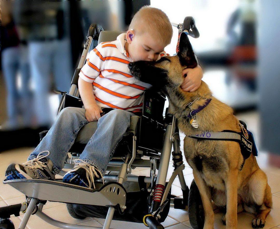 Фото говорит больше, чем тысячя слов