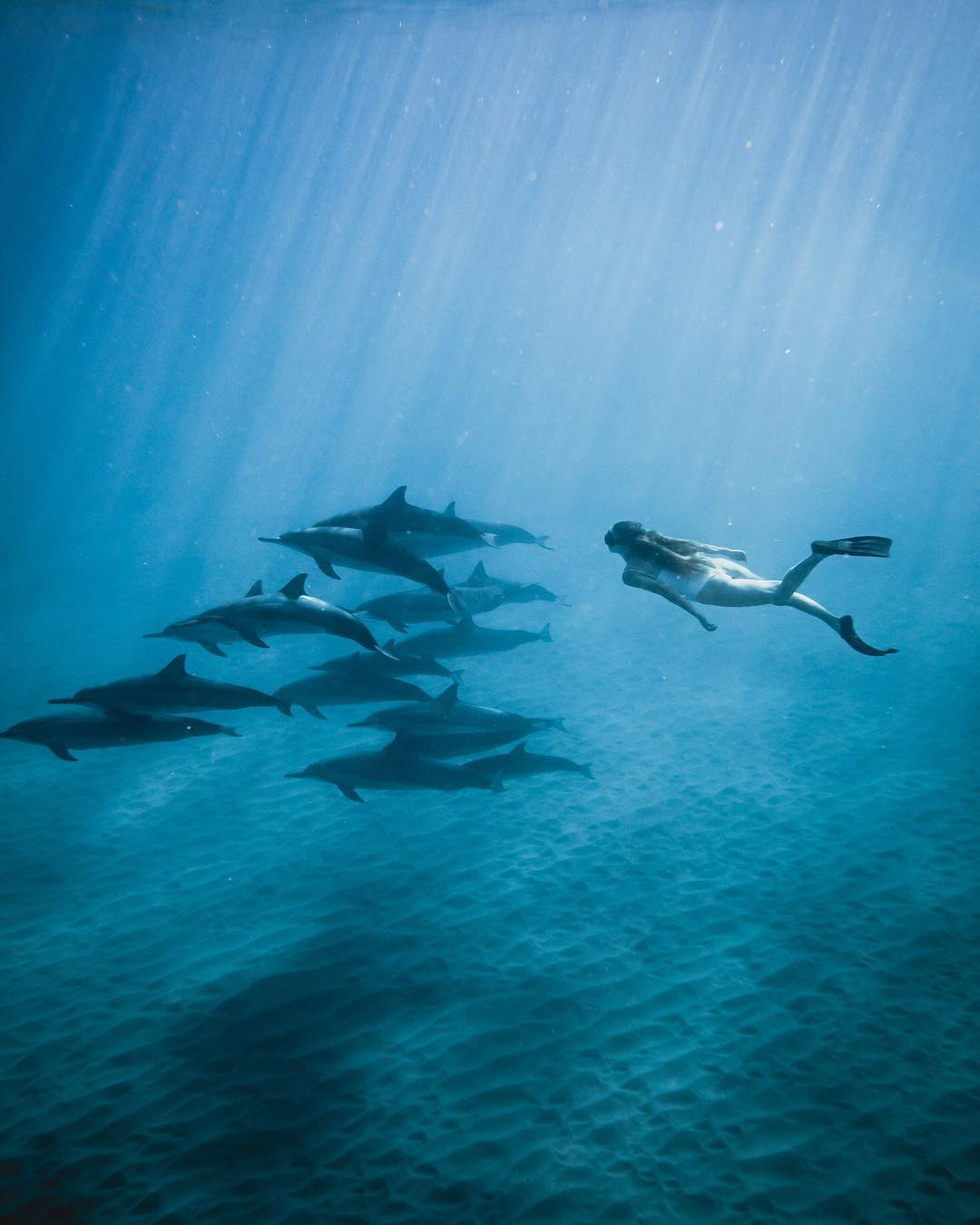 Путешествия в фотографиях Джоэль Френд (25 фото)