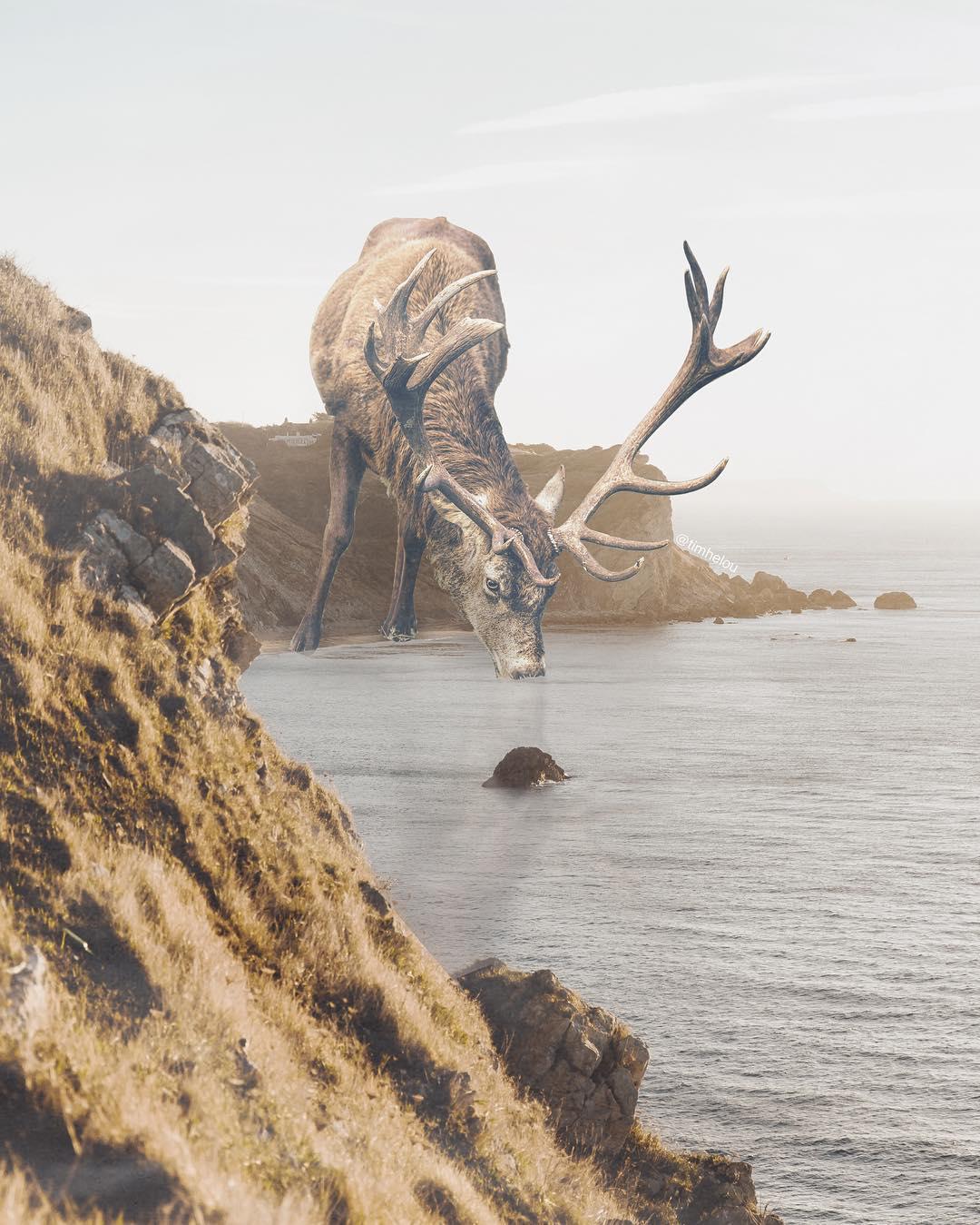 Удивительные и сюрреалистические фотоманипуляции Tim El-Helou (30 фото)