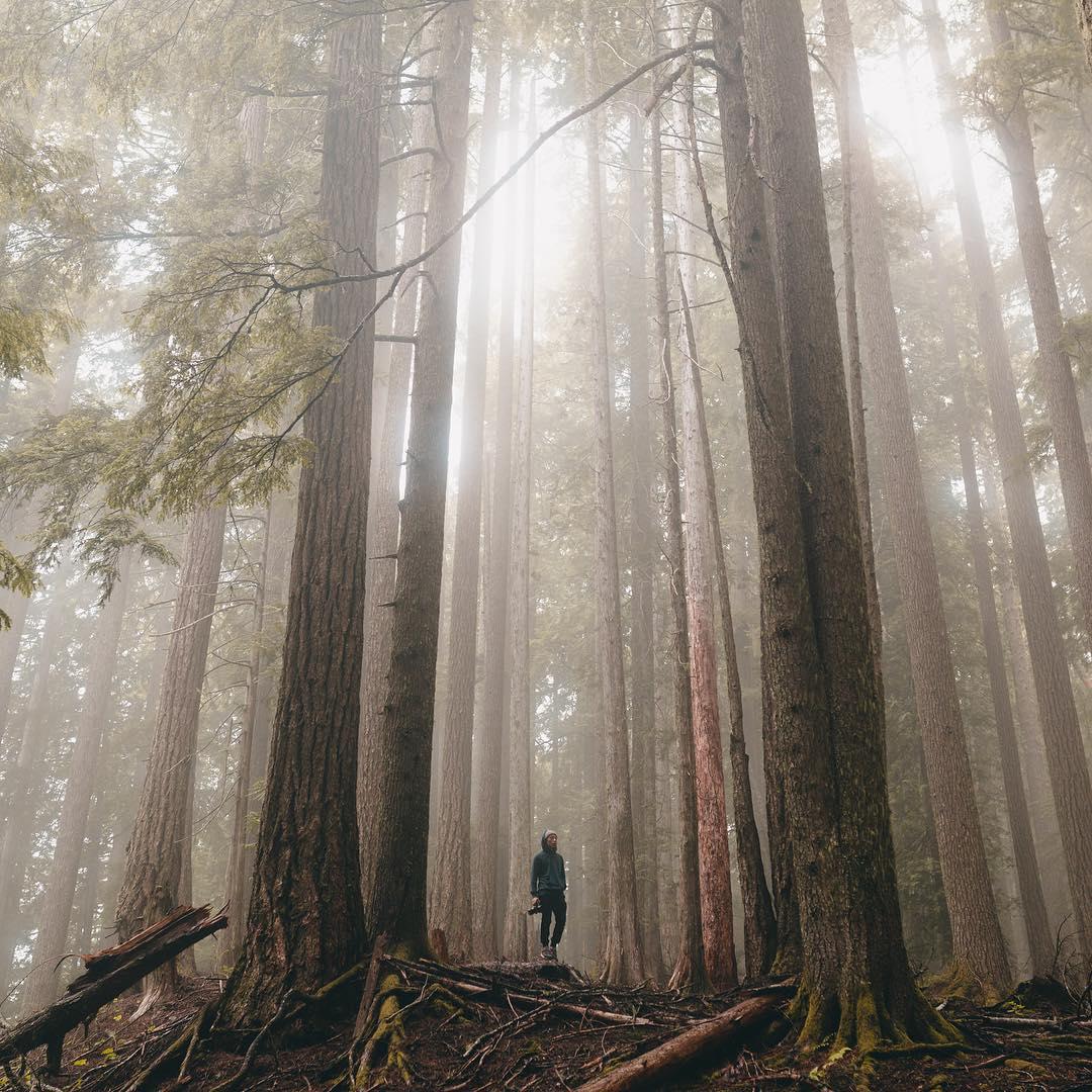 Невероятные путешествия и приключения в фотографиях Сэма Моррисона
