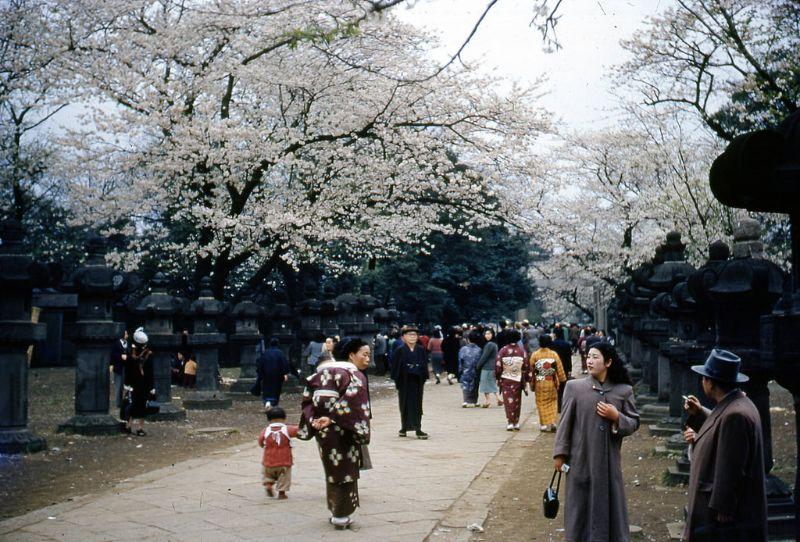 Цветные ретро фото повседневной жизнь Японии в послевоенную эпоху (30 фото)