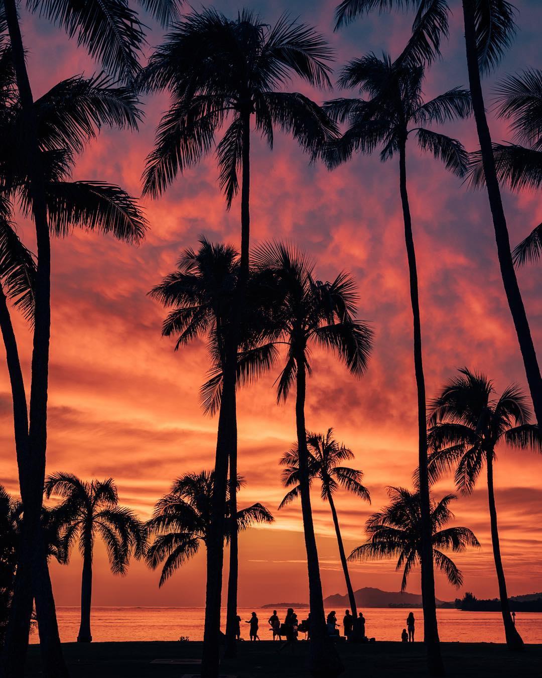 Восхитительные Гавайи на снимках Винсента Лима (25 фото)
