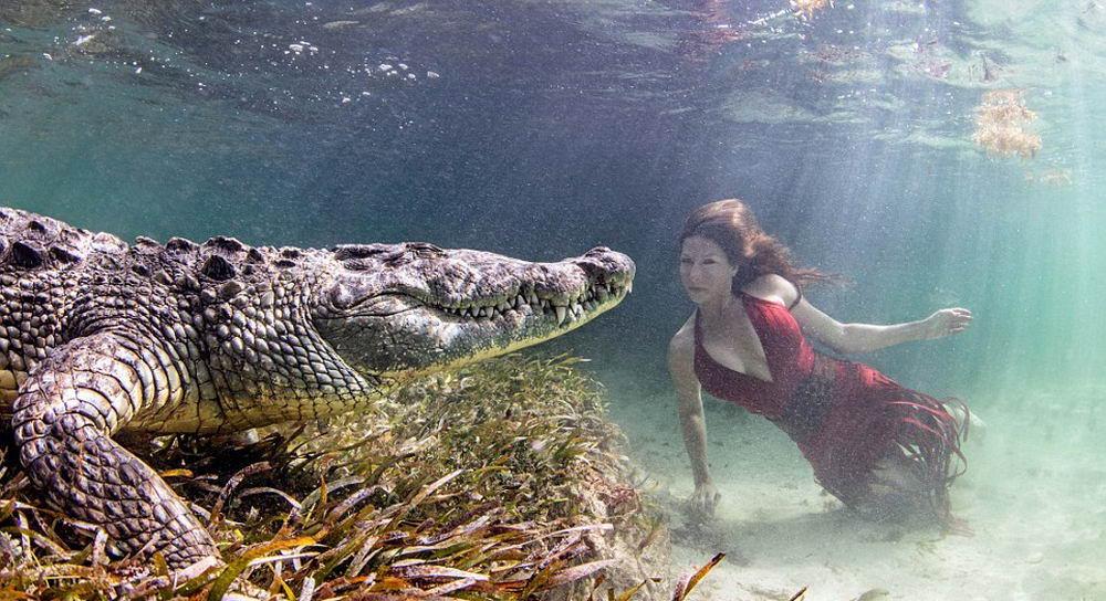 Храбрые девушки в фотосессии с огромными крокодилами (фото + видео)