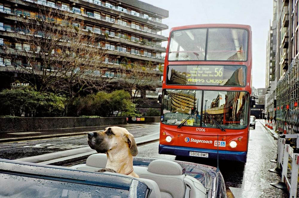 Лондон на снимках Мэтта Стюарта (30 фото)