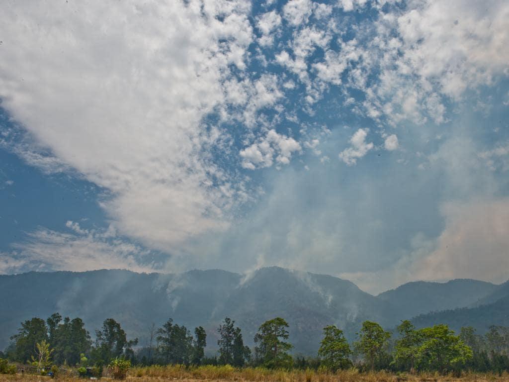 Лесные пожары теперь угрожают Австралии (22 фото)