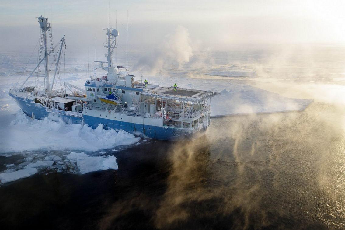 Арктические пейзажи Ника Коббинга (25 фото)