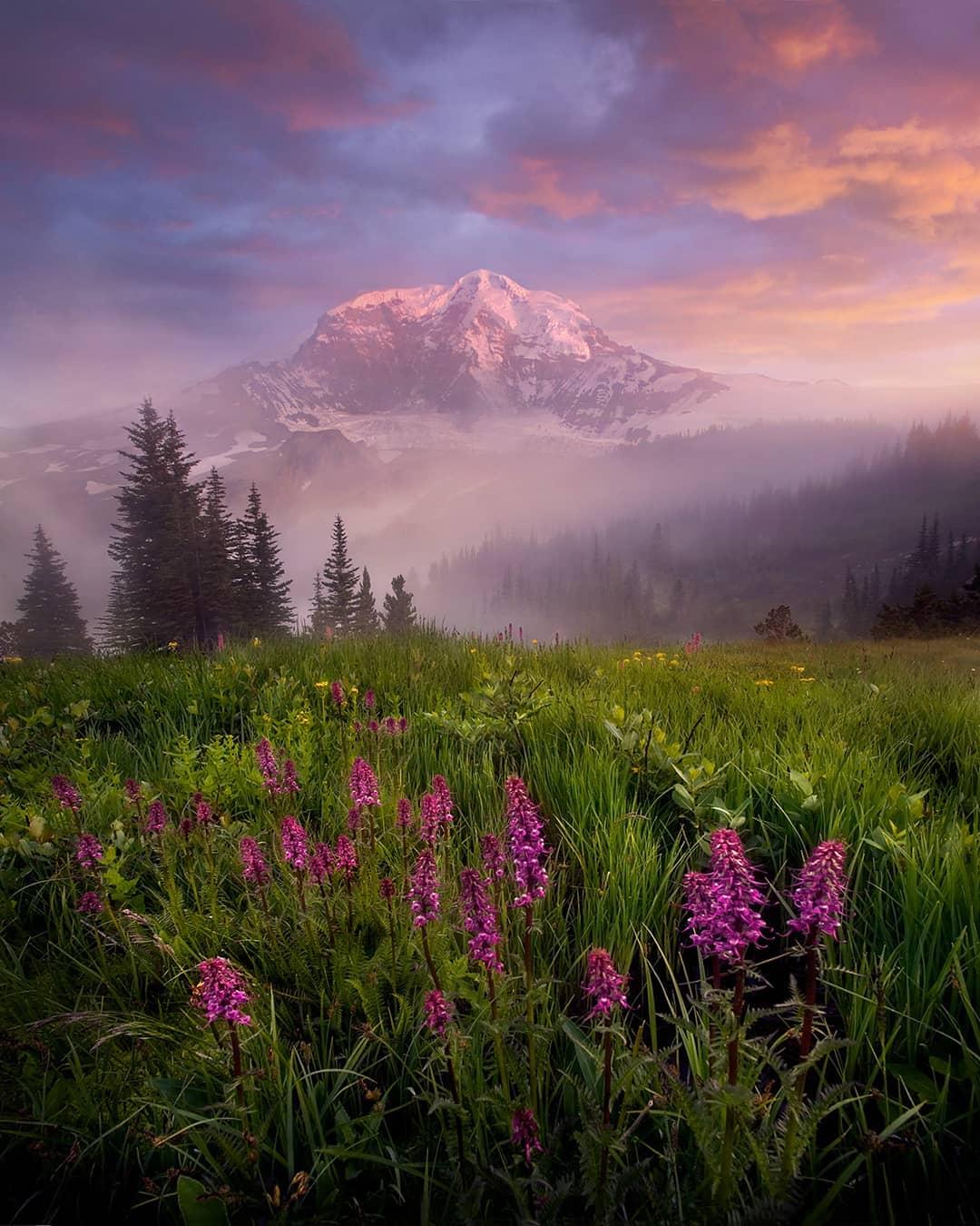 Красивые природные пейзажи Марка Адамуса (25 фото)