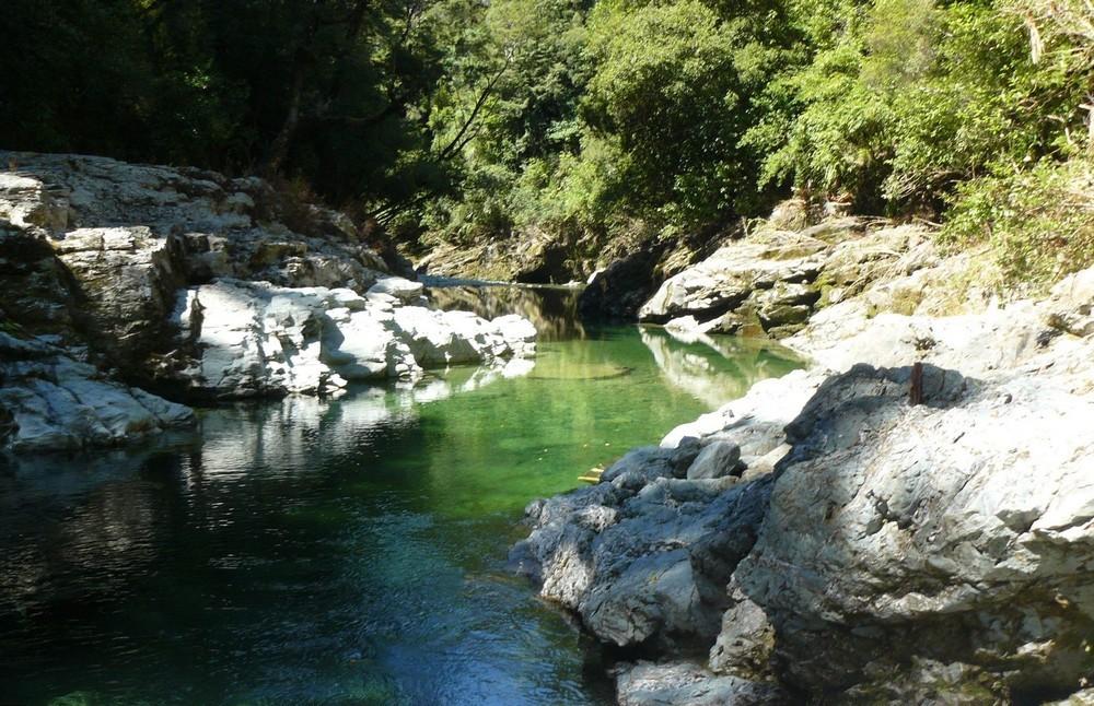 В Новой Зеландии продается участок золотоносной реки всего за  000