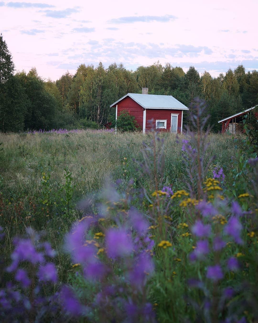 Финляндия на снимках Эсси Траутвейн (25 фото)