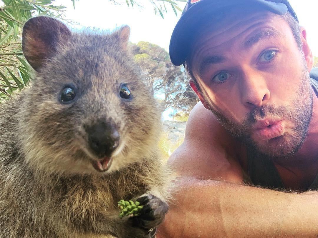 Тем временем в Австралии... (40 фото)