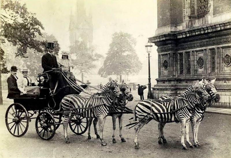 20 странных и необычных фотографий начала XX века
