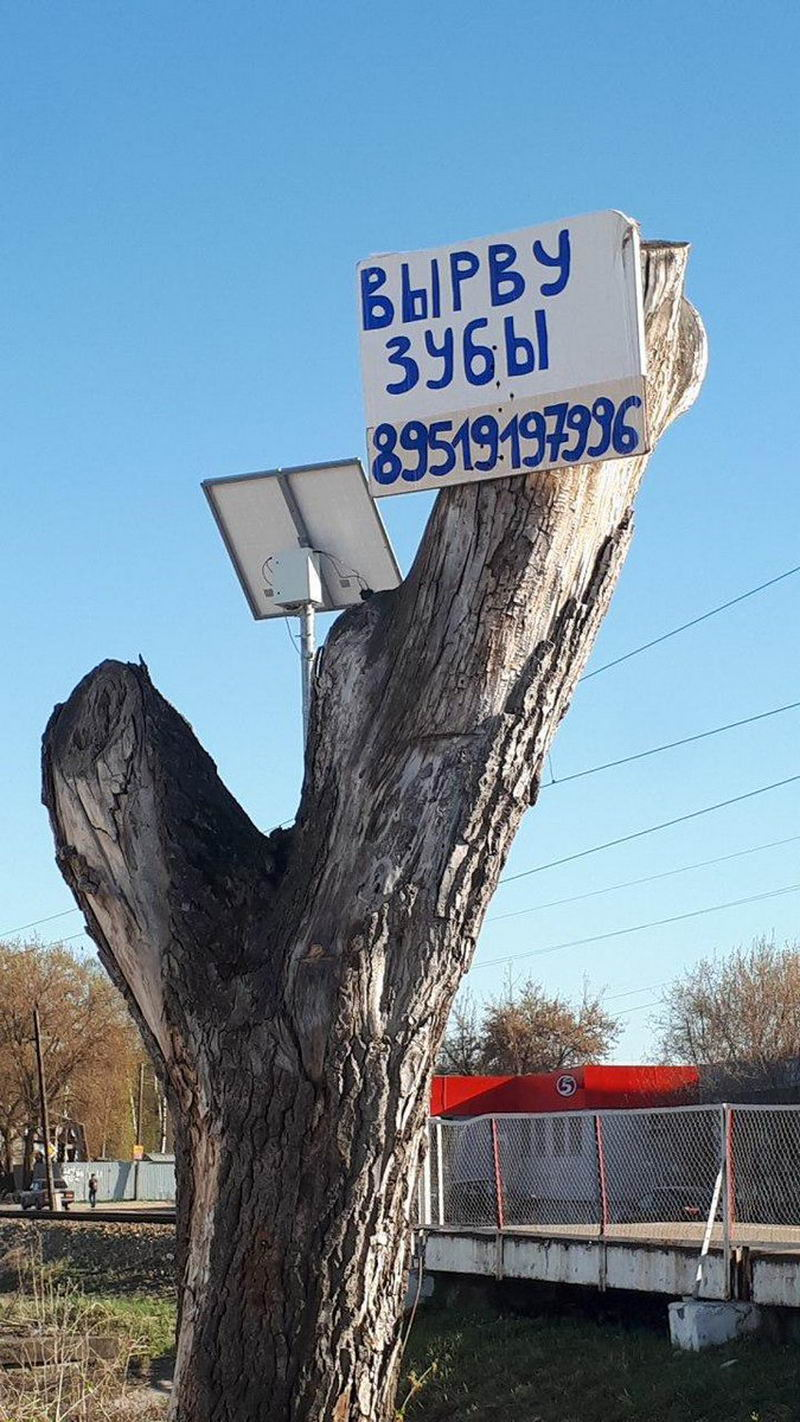 Мы живём в России - 94 (40 фото)