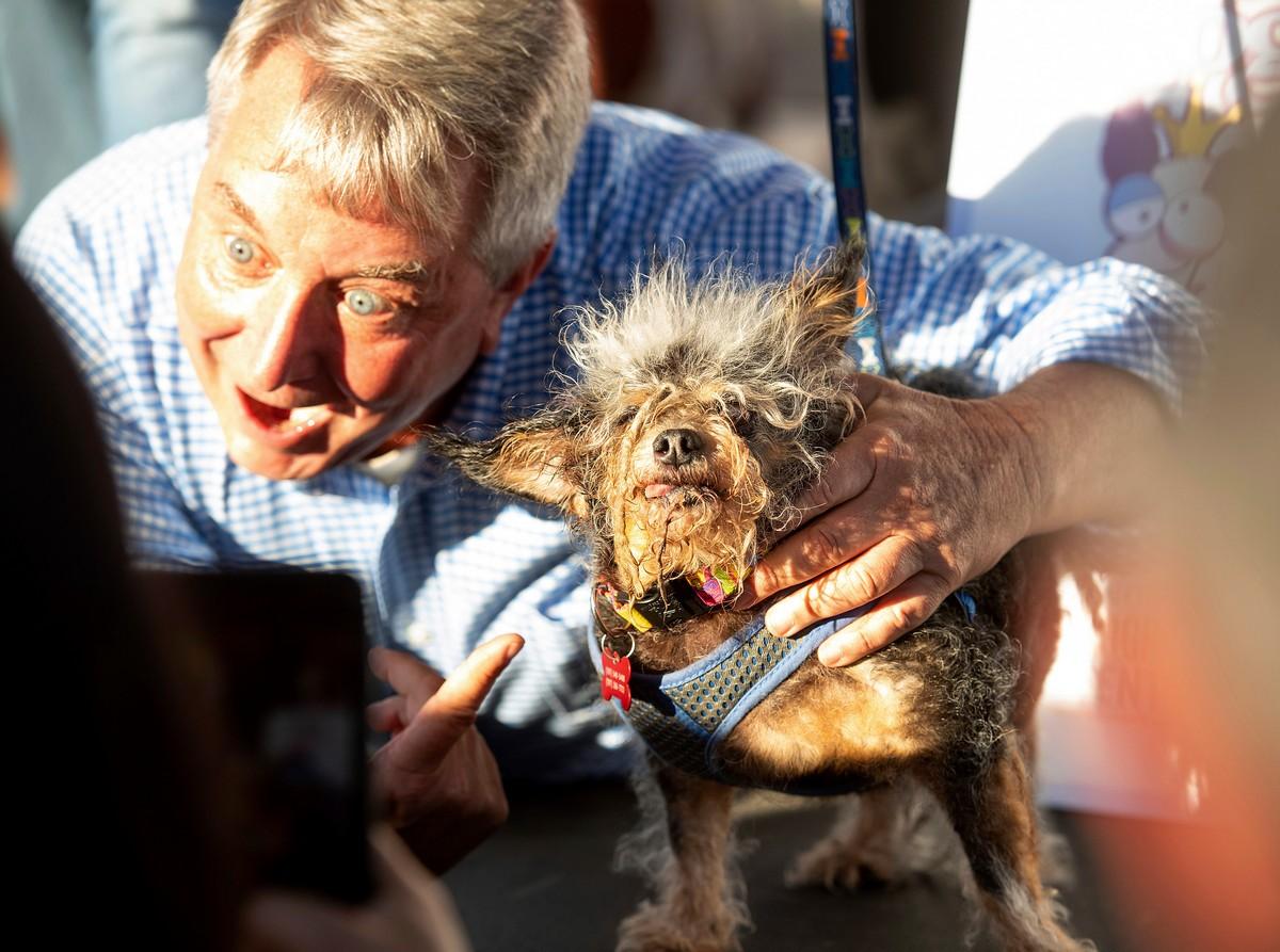 Конкурс за титул «Самой уродливой собаки в мире 2019» (25 фото)