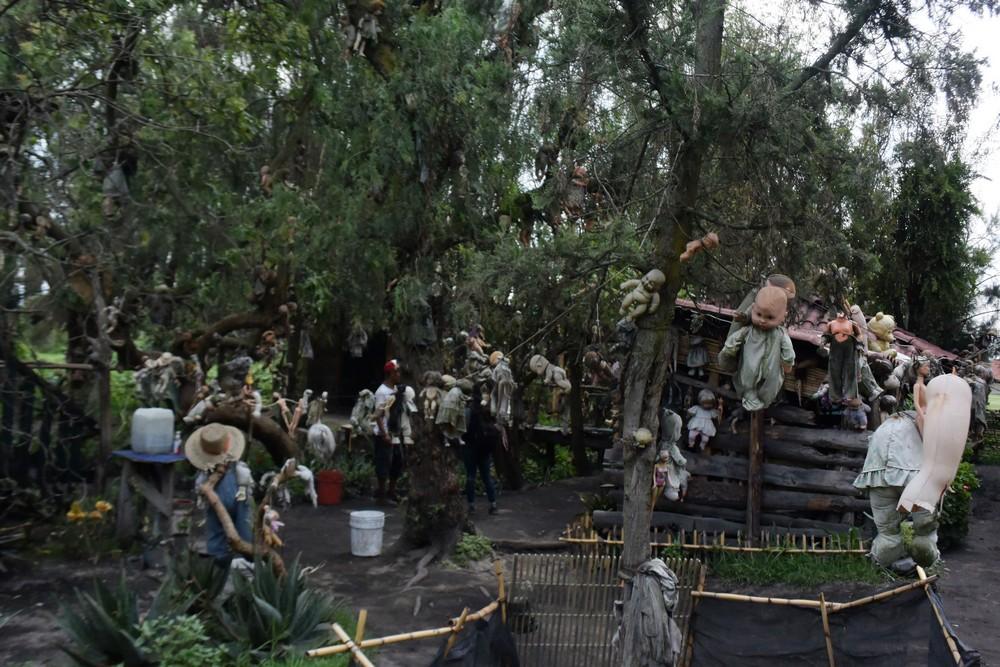 Жуткие фото с мексиканского \острова кукол\ (22 фото)