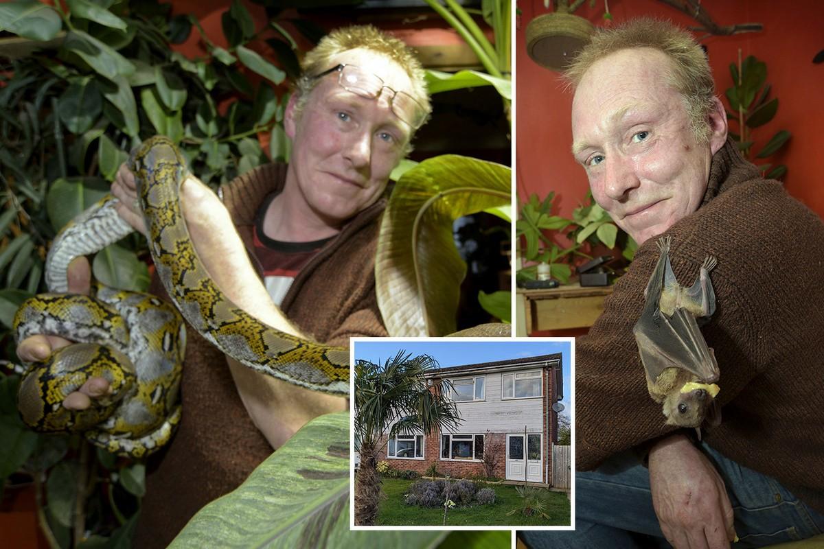 Британец потратил £22 000, создавая джунгли в доме