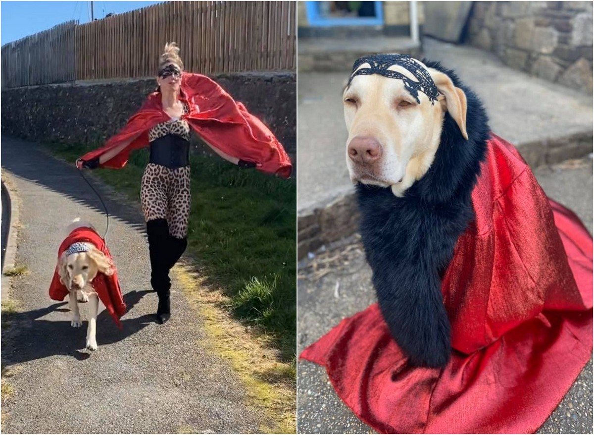 Британка выгуливает собаку в причудливых нарядах, чтобы развеселить соседей