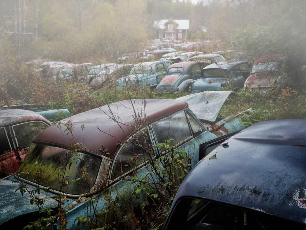 Красота брошенных автомобилей на снимках Дитера Кляйна (25 фото)