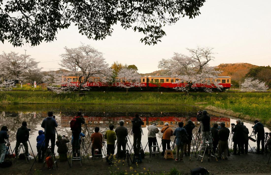 Повседневная жизнь в фото: Япония (25 фото)